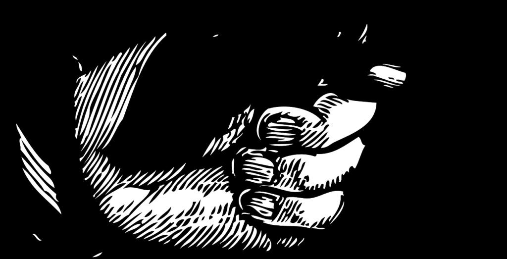 doigt pointé, main
